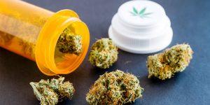 Pourquoi ces mamans chrétiennes veulent-elles donner du cannabis à leurs enfants ?
