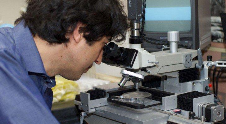Sciences : Des scientifiques découvrent que le jeûne déclenche la régénération des cellules souches et combat le cancer