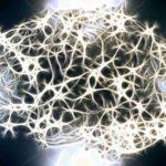 Science Humaine : Des scientifiques veulent ressusciter les morts  avec des cellules souches